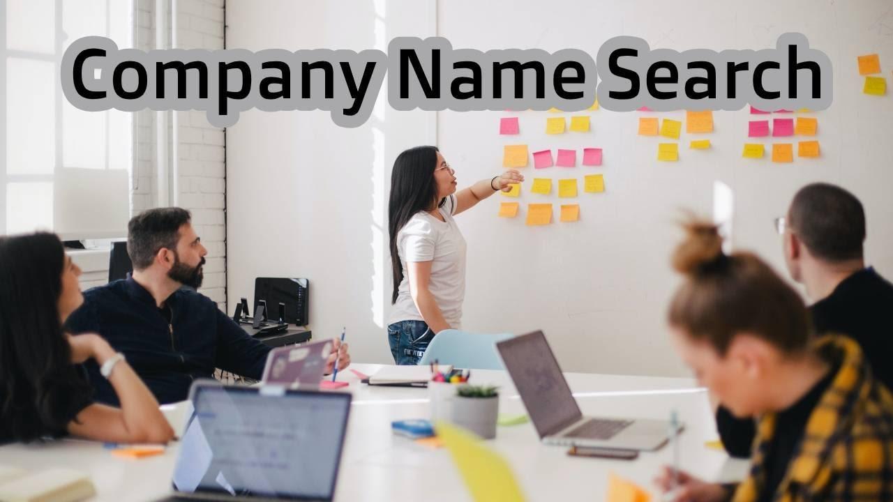 company name search